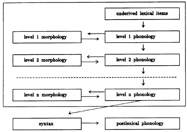 metathesis phonology Metathesis (linguistics) edit metathesis (template: an outline of the morphology and phonology of saanich, north straits salish.